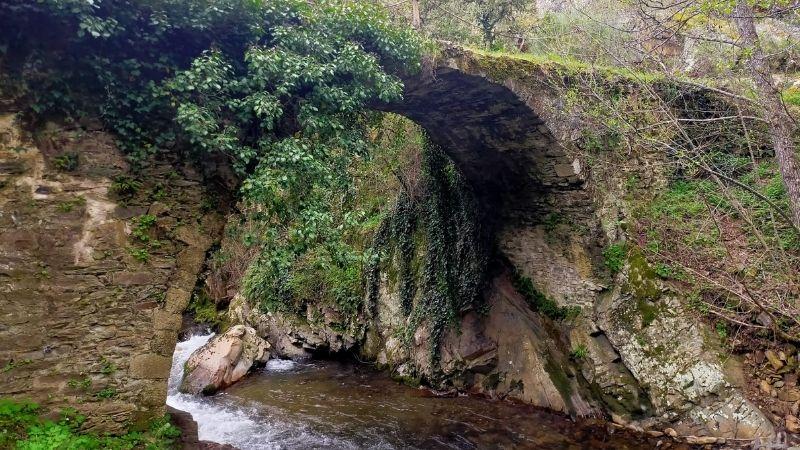 La Puente Grande, Puentes de Malpaso