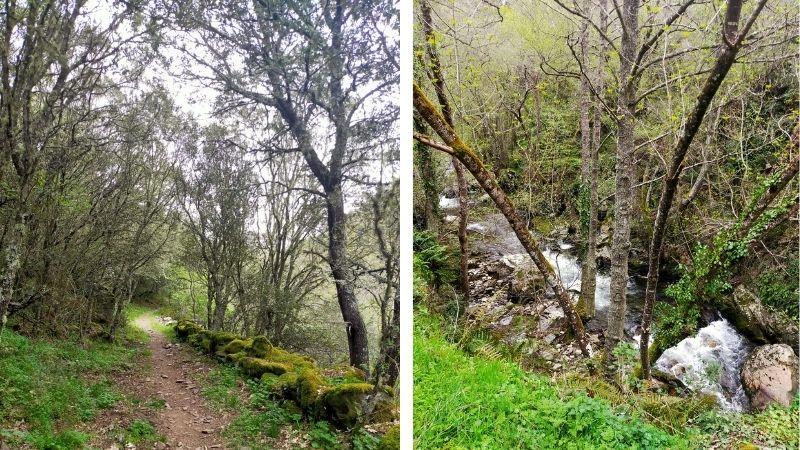 Ruta Puentes de Malpaso, vistas